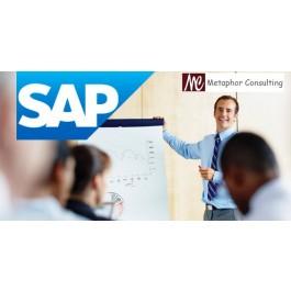 SAP ERP Training Center Metaphor Consulting Sonari