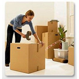 Mamta Relocation Packers and Movers in Anaaj Mandi Bhatinda