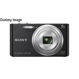 Sony Digital Camera Well in Condition