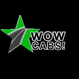 Cab in delhi|cabs delhi