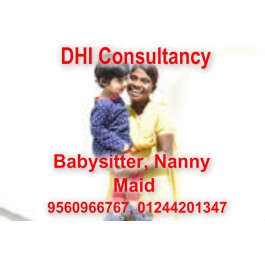 Baby Sitter Maid Driver Housekeeping Patient Care