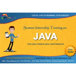 Regular/Summer Project Based IT Training in Ghaziabad.