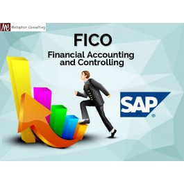 SAP classes for all functional modules in metaphor consulting