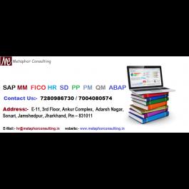 SAP ERP Course Training Program in Metaphor Consulting Sonari