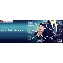 SAP New Batches Starts for Freshers in Metaphor Consulting