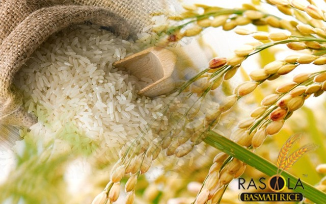 Rice Suppliers Delhi - Rice Suppliers in, India, अन्य